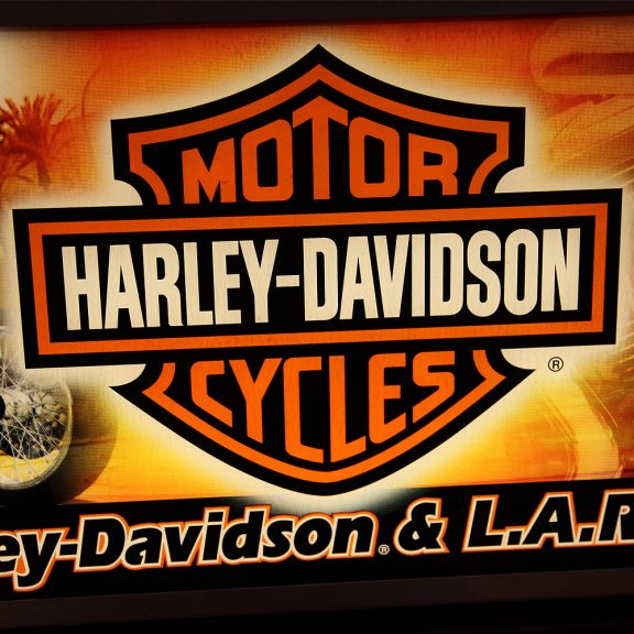 Harley Davidson & L.A. Riders