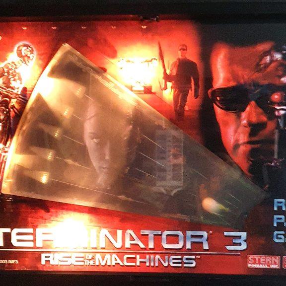 Terminator-flipperi